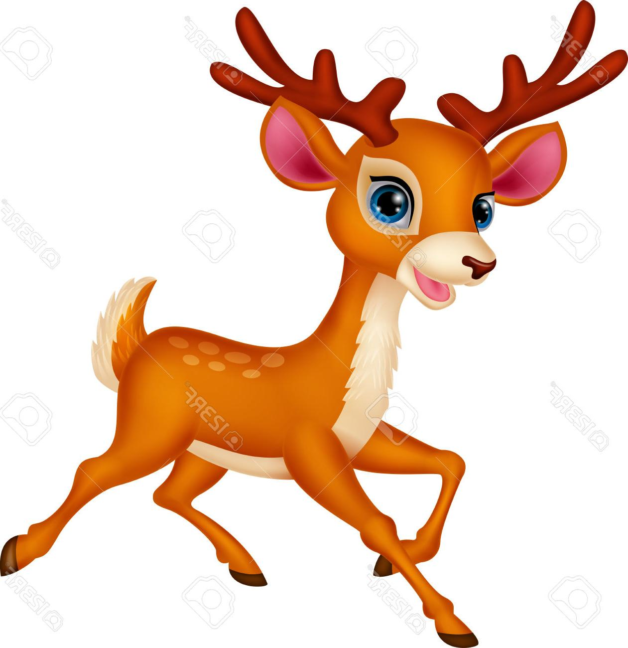 Baby buck head clipart picture freeuse Baby Deer Clipart | Free download best Baby Deer Clipart on ... picture freeuse