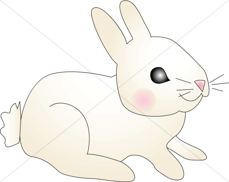 Baby bunny clipart images picture library library Baby Bunny with Pink Cheeks | Wildlife Clipart picture library library