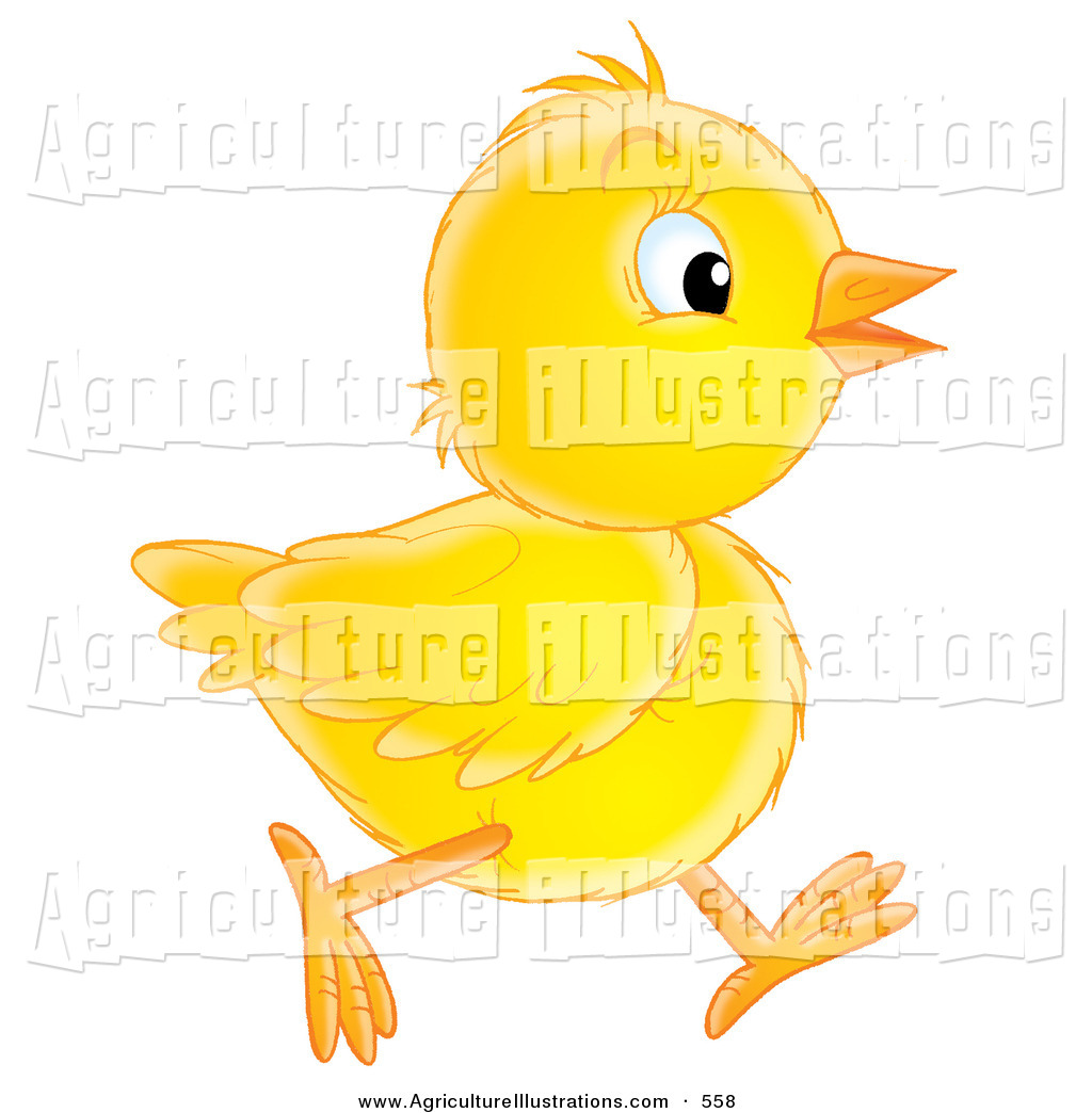 Baby chicks following clipart vector free download Agriculture Clipart of a Yellow Baby Chick Running to the Right in ... vector free download