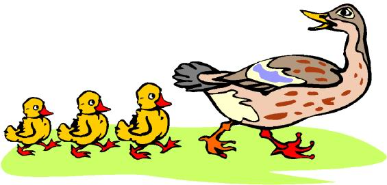 Walking ducks clipart clip freeuse Baby Chicks Clipart | Free download best Baby Chicks Clipart on ... clip freeuse