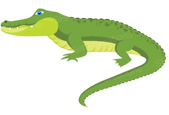 Baby crocodile swamp clipart png graphic transparent download Alligator Clipart | Crocodile Digital Download Art | Commercial Use ... graphic transparent download