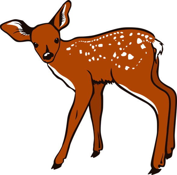Baby deer free clipart clip art library download Cute baby deer clipart free clipart images 3 - Cliparting.com clip art library download