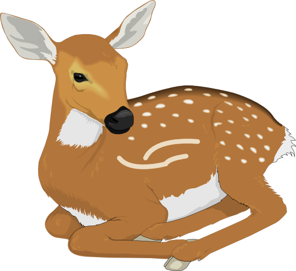 Baby deer pictures clipart png black and white stock Resting Baby Deer Clip Art at Clker.com - vector clip art online ... png black and white stock