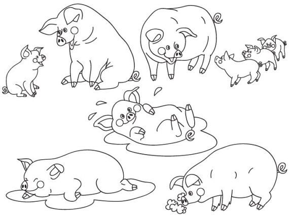 Baby farm animals clipart black and white pig banner transparent library ITEM: Pigs Clipart - Digital Vector Pigs, Baby Pig Clipart, Cute Pig ... banner transparent library