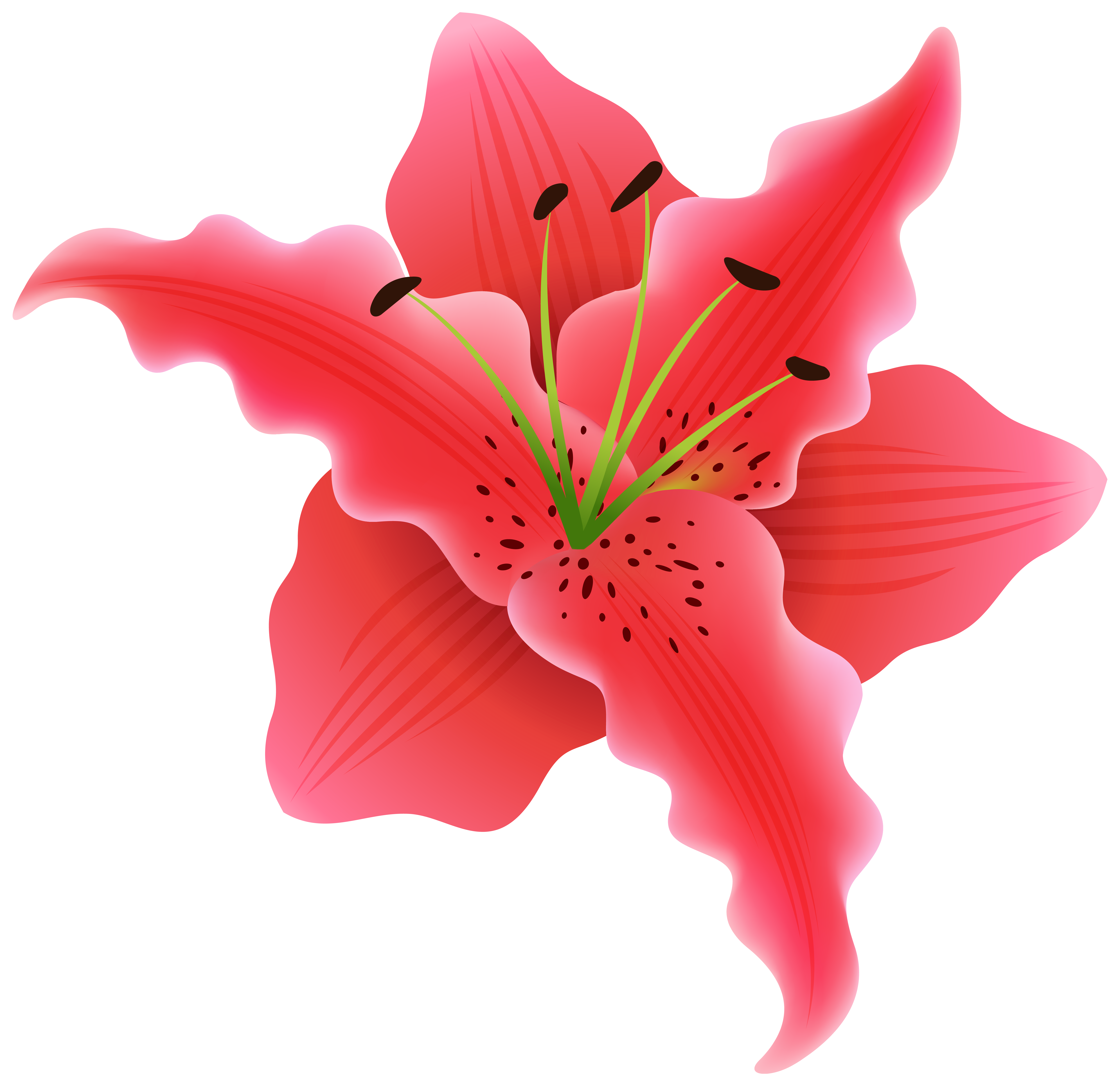 Clipart hair flower picture library Beautiful Exotic Flower PNG Clipart Image | Gallery Yopriceville ... picture library