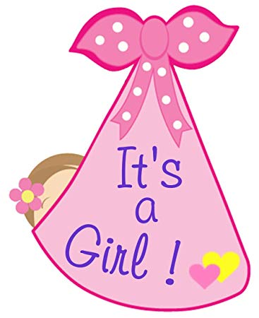 Baby girl birth announcement clipart clip art free stock Amazon.com : It\'s a Girl Hospital Door Hanger Sign - Welcome Newborn ... clip art free stock