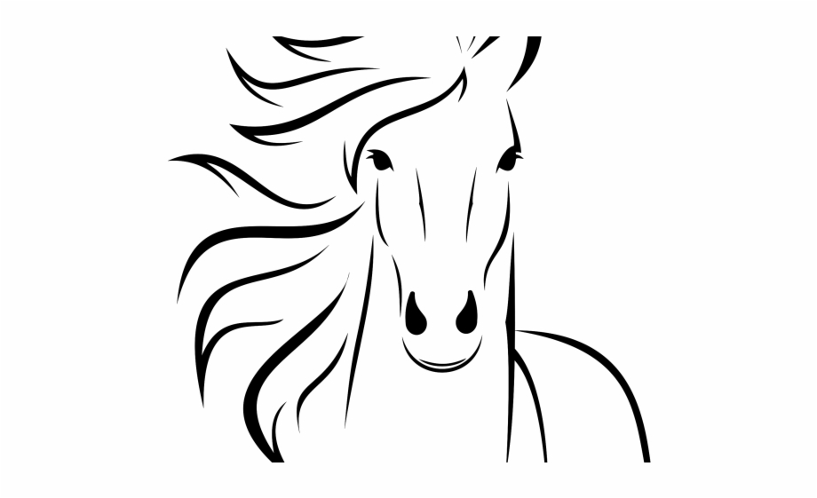 Horse drawing clipart clip transparent download Goats Head Clipart Baby Horse - Draw A Horse Cartoon, Transparent ... clip transparent download