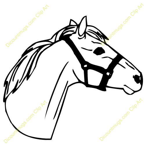 Baby horse head clipart clip art free 99+ Horse Head Clip Art   ClipartLook clip art free