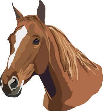 Baby horse head clipart clip art Free Free Images Of Horses, Download Free Clip Art, Free Clip Art on ... clip art
