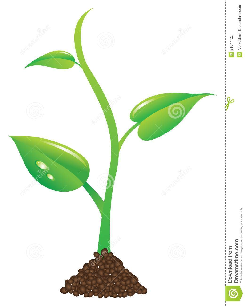 Baby plant clipart vector transparent stock Growing Clipart | Free download best Growing Clipart on ClipArtMag.com vector transparent stock