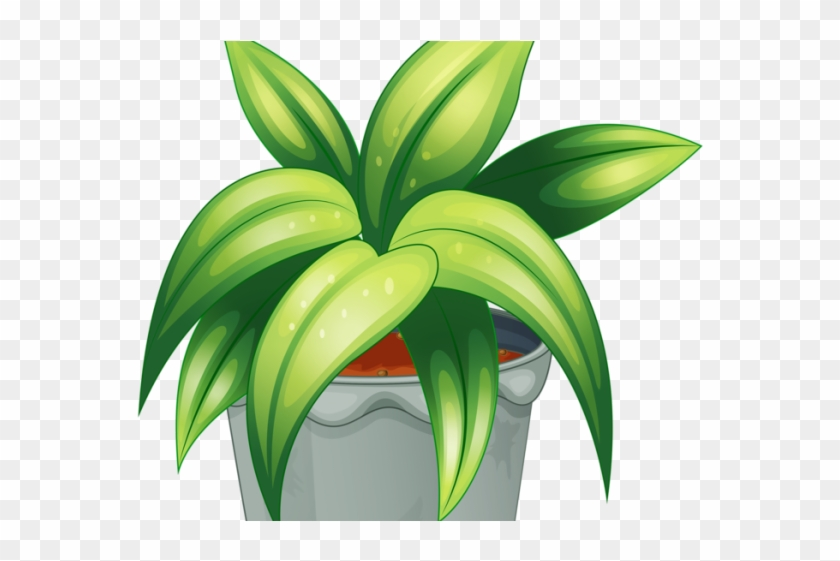 Baby plant clipart svg royalty free library Pot Plant Clipart Baby - Plants Cartoon Psd, HD Png Download ... svg royalty free library