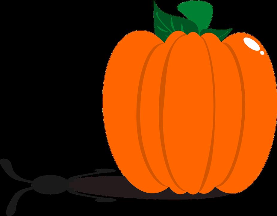 Baby pumpkin clipart jpg transparent Autumn Pumpkin Cliparts#4249352 - Shop of Clipart Library jpg transparent