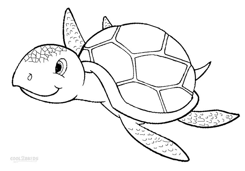 Baby sea turtle clipart black and white freeuse Turtle, Drawing, Child, Line, Design, Pattern png clipart free download freeuse
