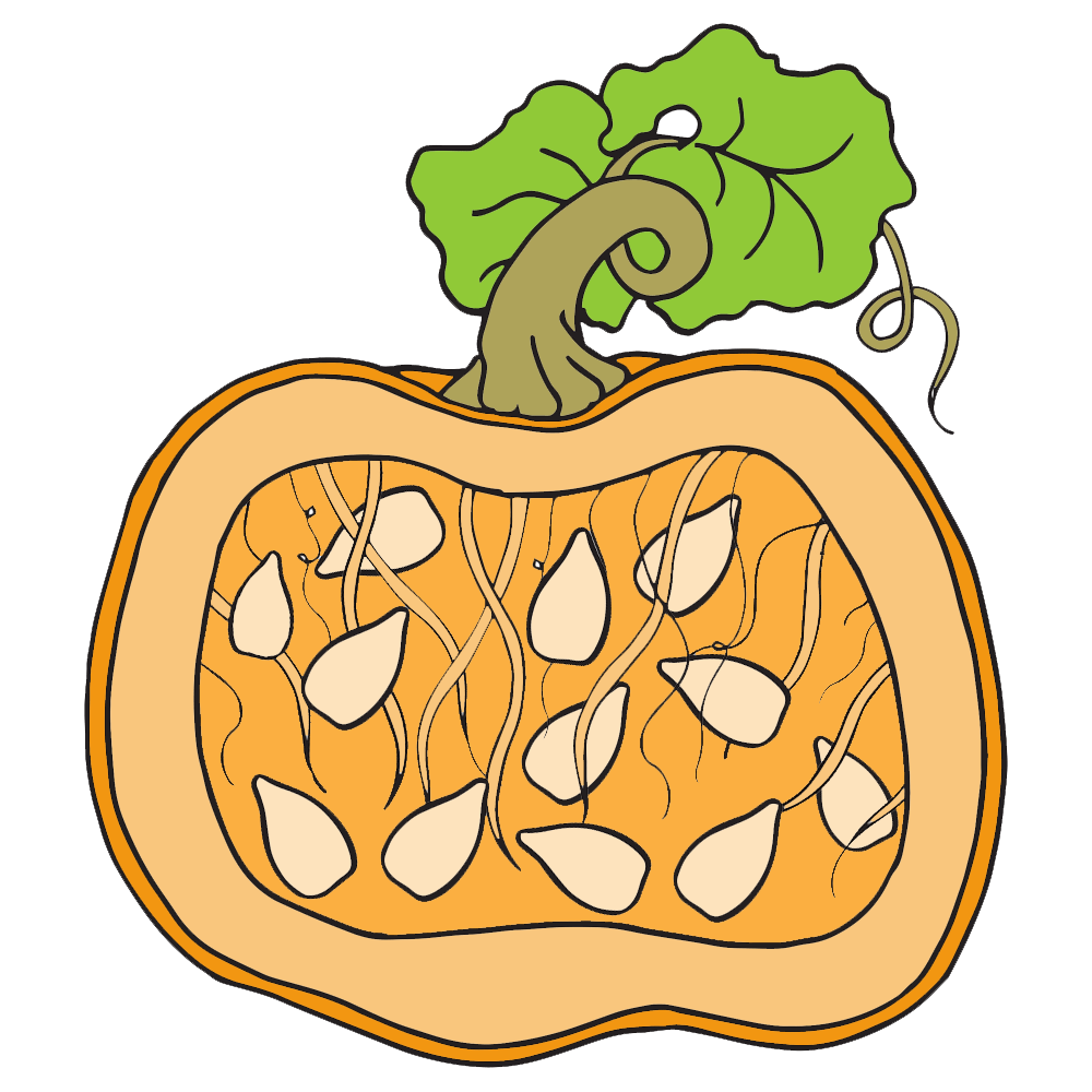 Inside a pumpkin clipart clipart transparent download Pumpkin Clipart line - Free Clipart on Dumielauxepices.net clipart transparent download