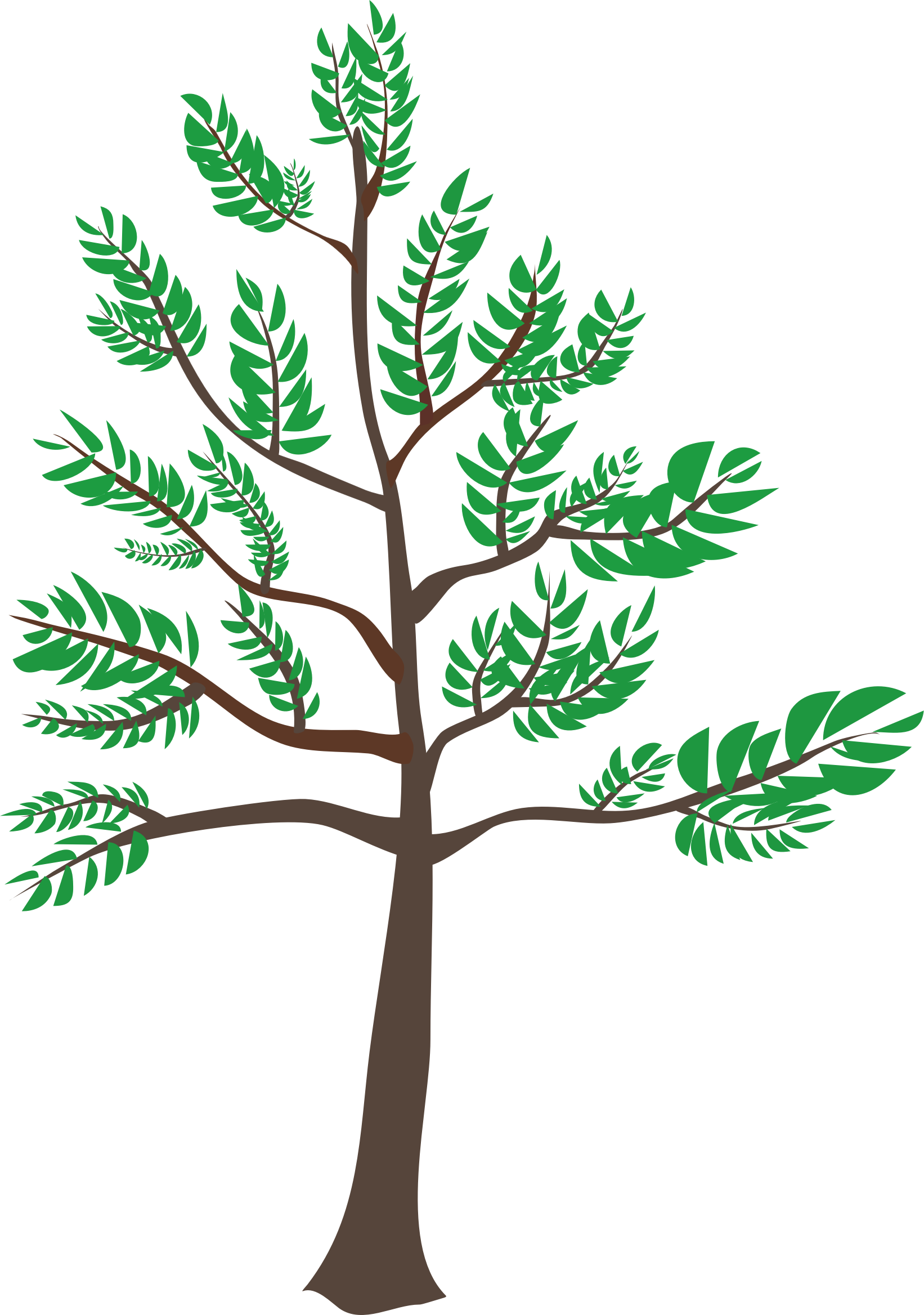 Young tree clipart vector freeuse download 28+ Collection of Young Tree Clipart | High quality, free cliparts ... vector freeuse download