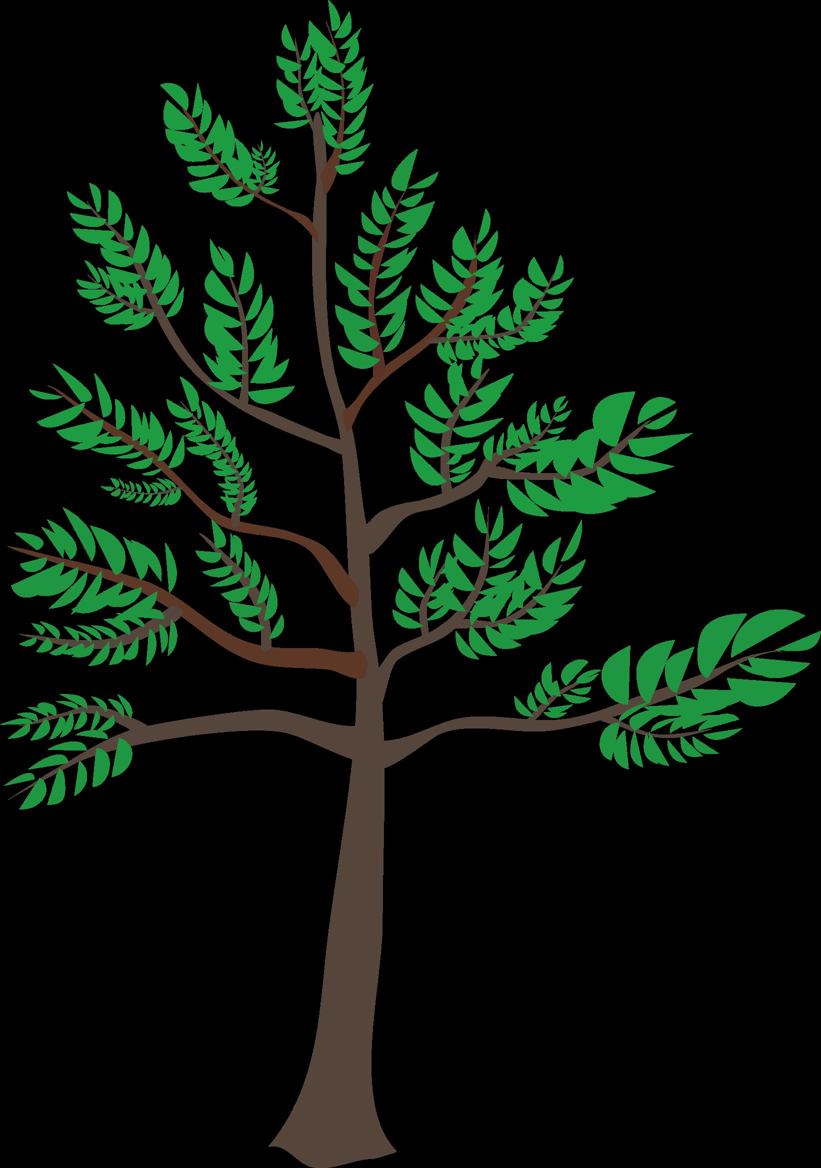 Cedar tree clipart svg library stock 28+ Collection of Young Tree Clipart | High quality, free cliparts ... svg library stock