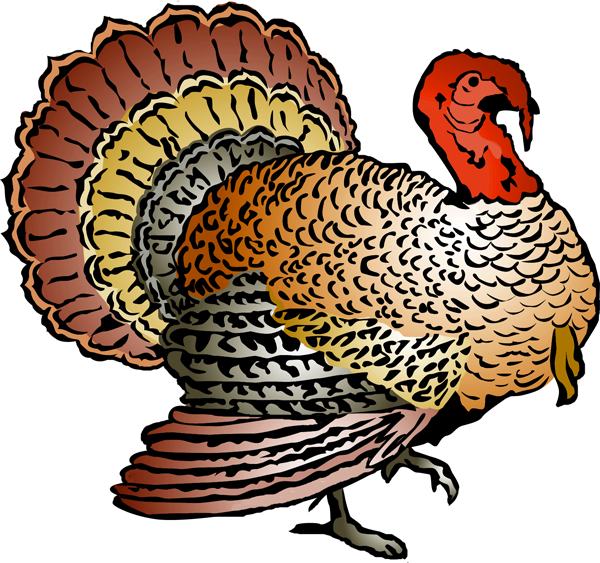 Wild turkey clipart outline black and white image royalty free Colorful Turkey Clipart | Clipart Panda - Free Clipart Images image royalty free