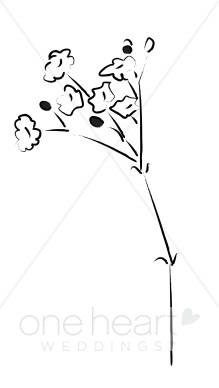 Baby Breath Clipart | Elegant Wedding Flower Sketches vector library stock