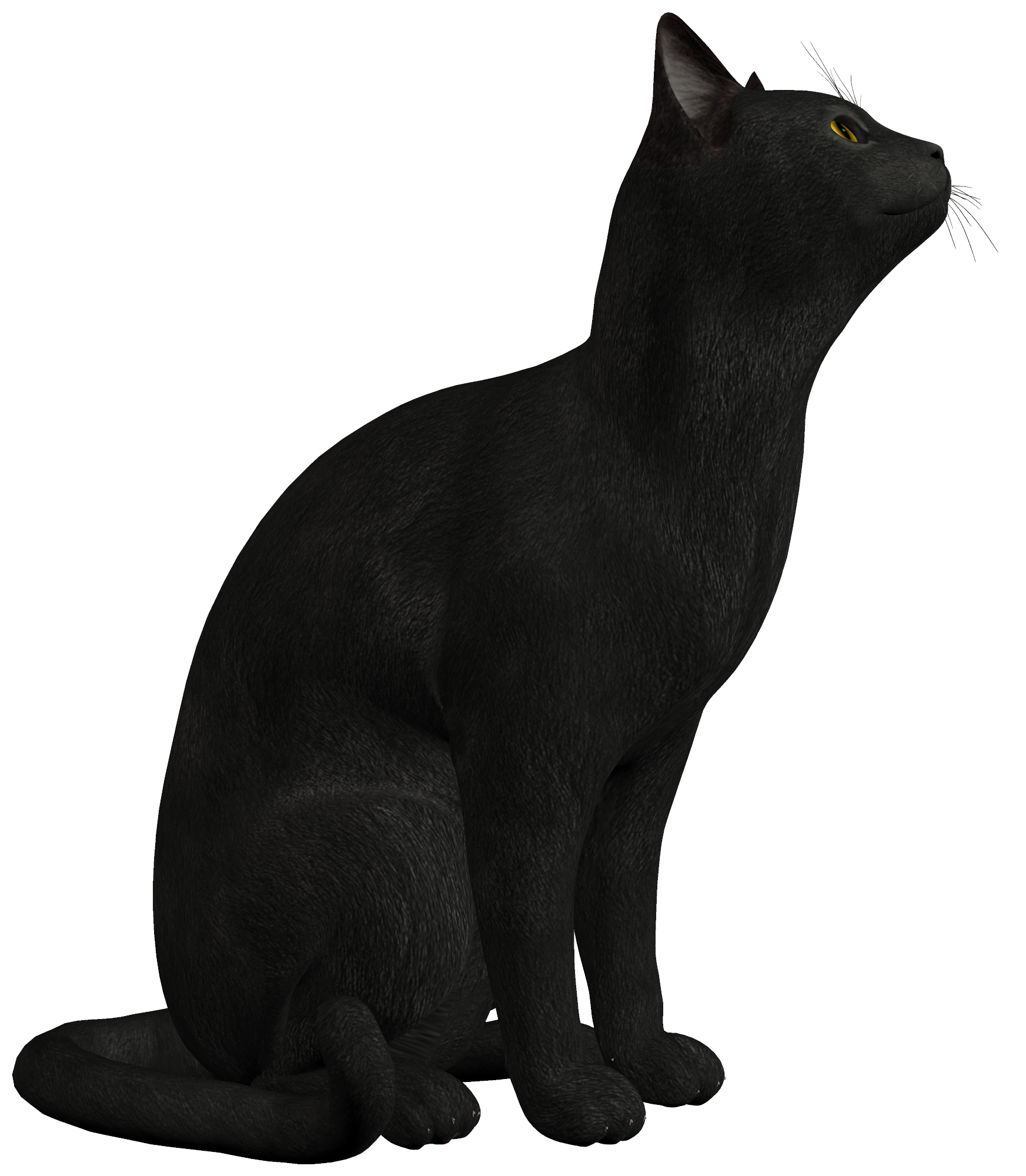 Black cat clipart black and white picture transparent stock Black Cat PNG Clipart - Best WEB Clipart picture transparent stock