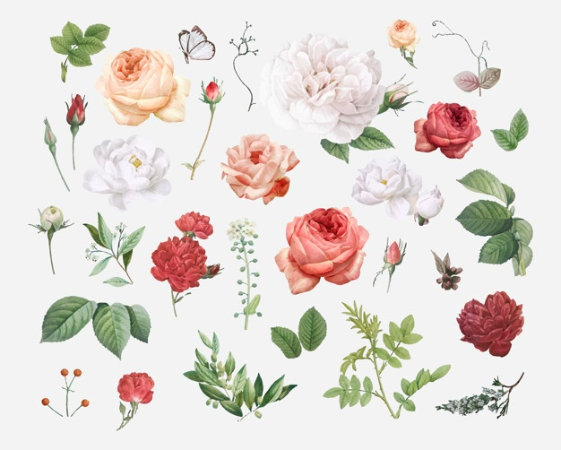 Floral Background Vectors, Photos and PSD files | Free Download image black and white download