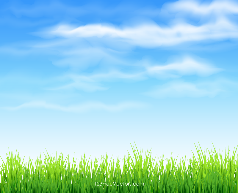 Background grass and sky clipart clip free gro himmel | TM8 | Backgrounds in 2019 | Grass background, Blue sky ... clip free