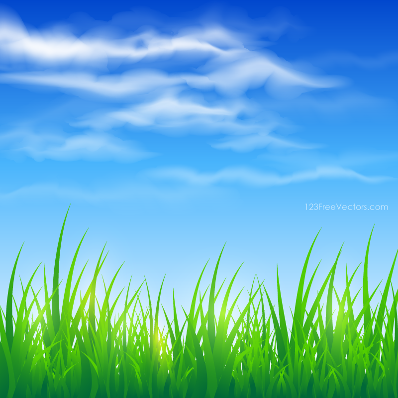 Green background hd clipart svg free stock Blue Sky and Green Grass Background | Nature Backgrounds in 2019 ... svg free stock