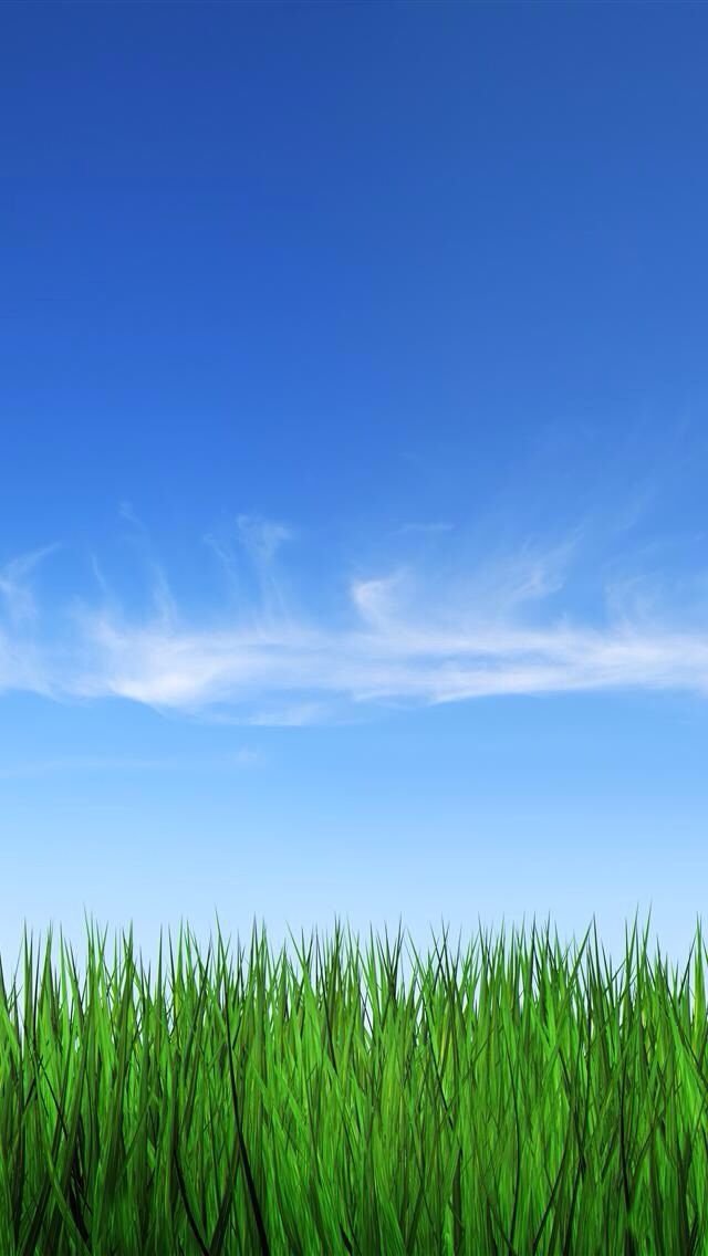 Background grass and sky clipart picture royalty free library Blue sky and green grass | Lock Screens in 2019 | Grass background ... picture royalty free library