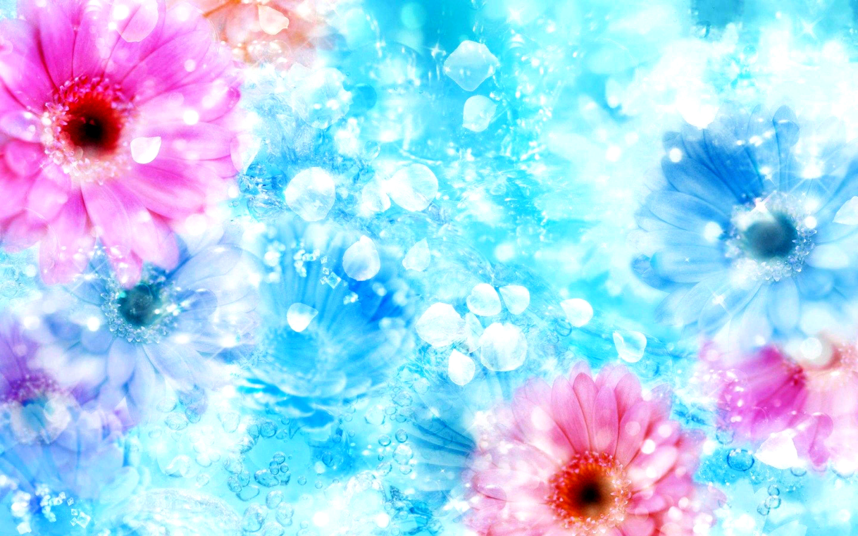 flower hd wallpapers. Background images of flowers