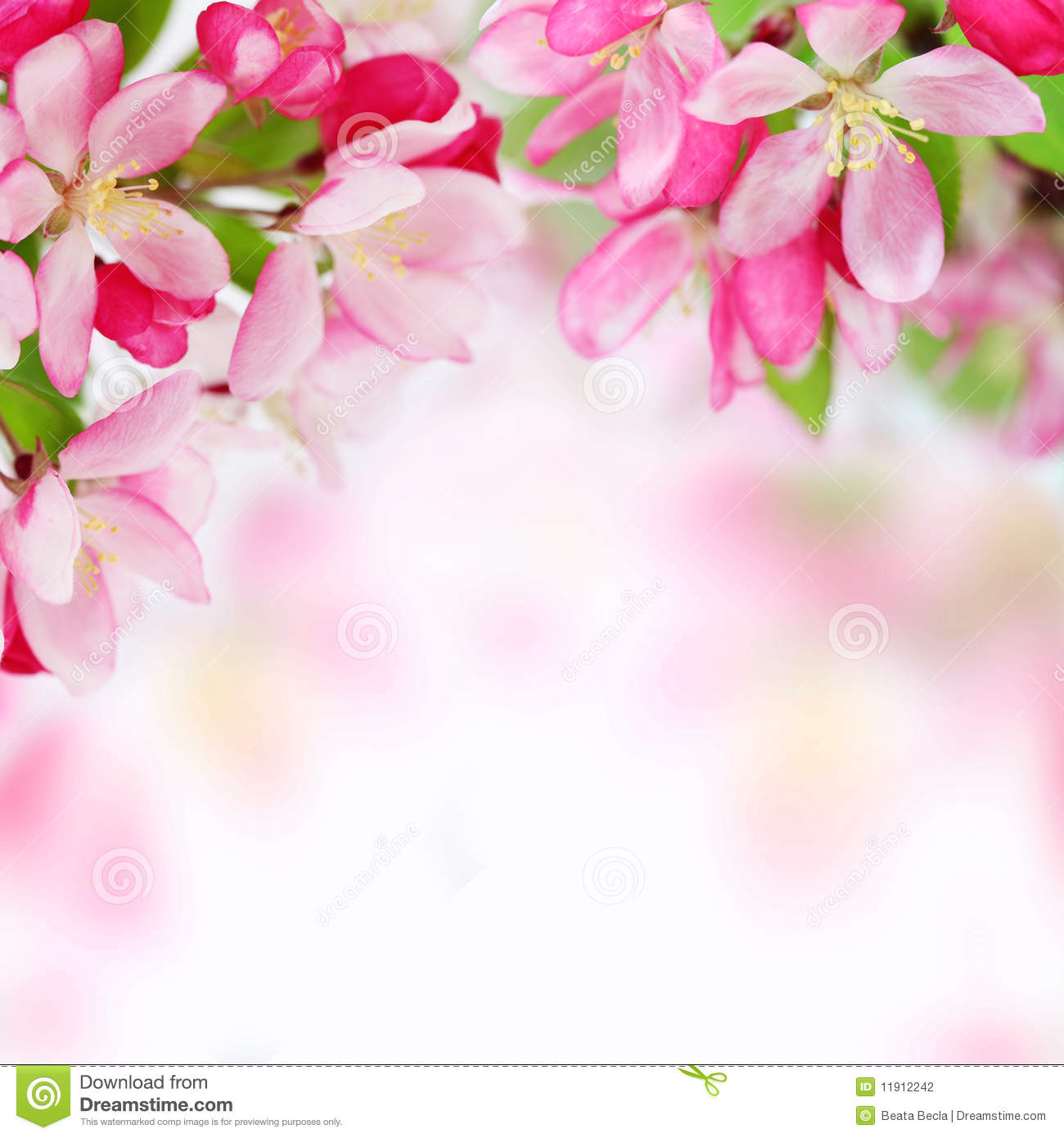 Gallery For: Flowers Background Pictures, Flowers Wallpapers, Top ... graphic library