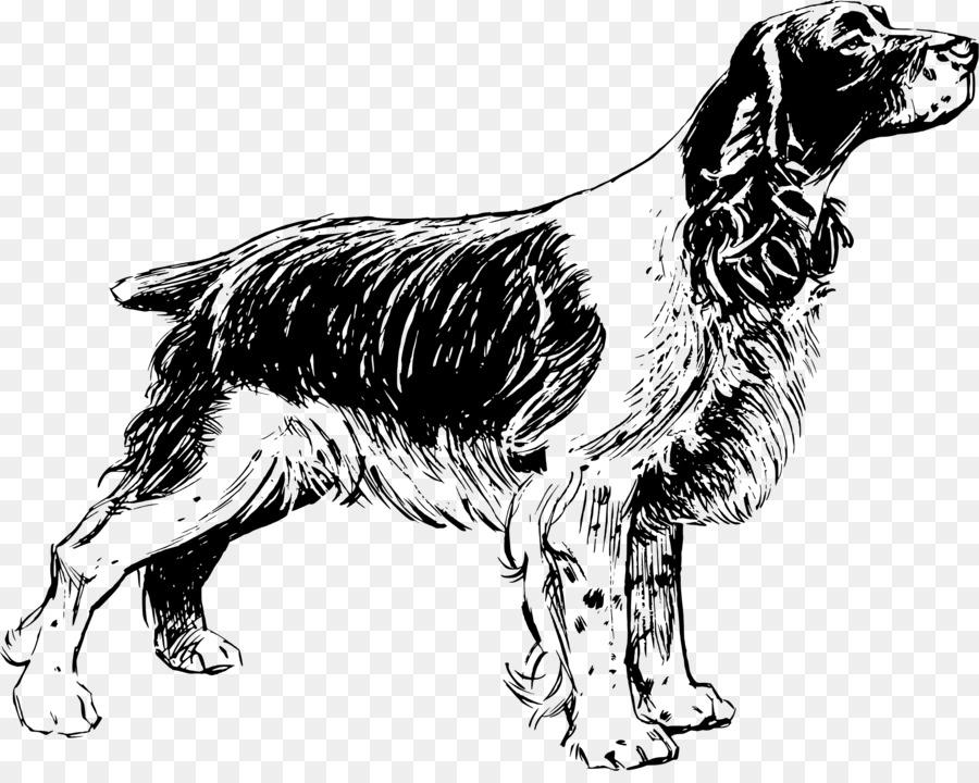 Background less springer spaniel clipart image transparent stock Golden Retriever Background clipart - Puppy, Dog, Drawing ... image transparent stock