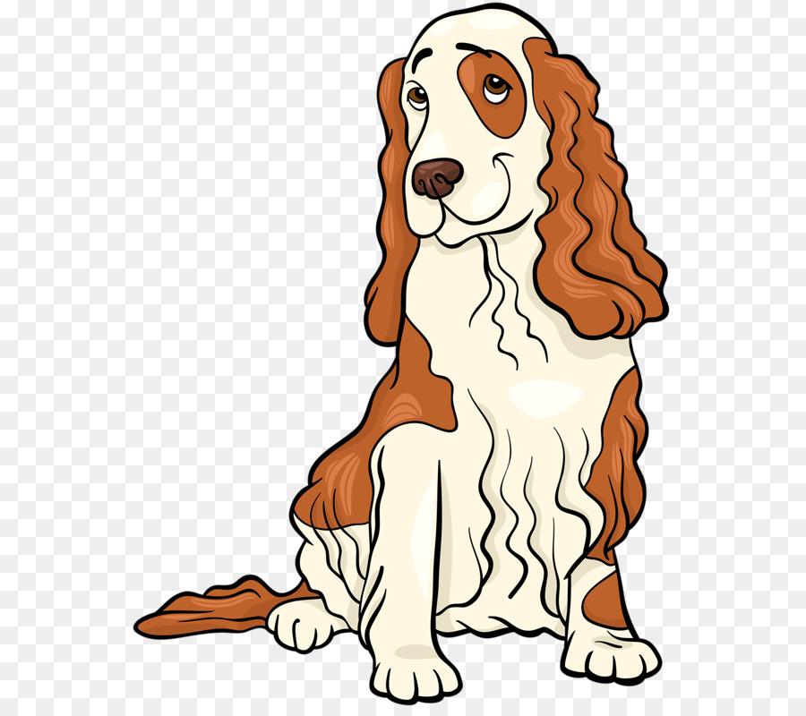 Background less springer spaniel clipart image free Dog Drawing png download - 614*800 - Free Transparent English Cocker ... image free