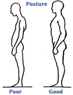 Bad posture clipart graphic library Free Posture Cliparts, Download Free Clip Art, Free Clip Art on ... graphic library