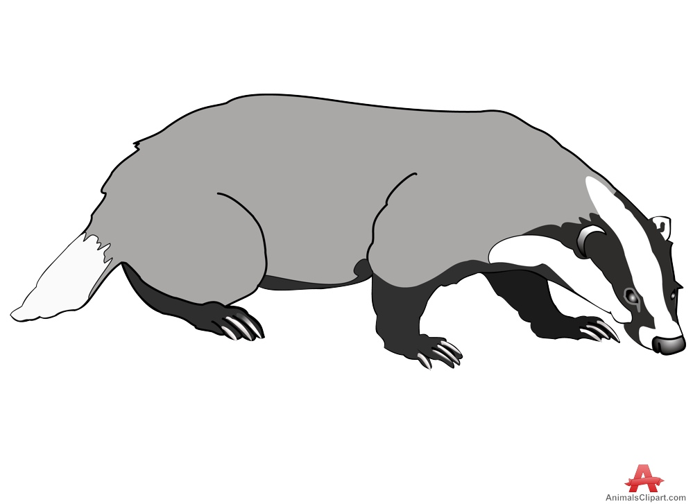 Badger clipart black and white clipart free library Free Badger Clipart Black And White, Download Free Clip Art, Free ... clipart free library