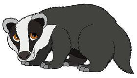 Badger clipart images image free download 53+ Badger Clip Art   ClipartLook image free download