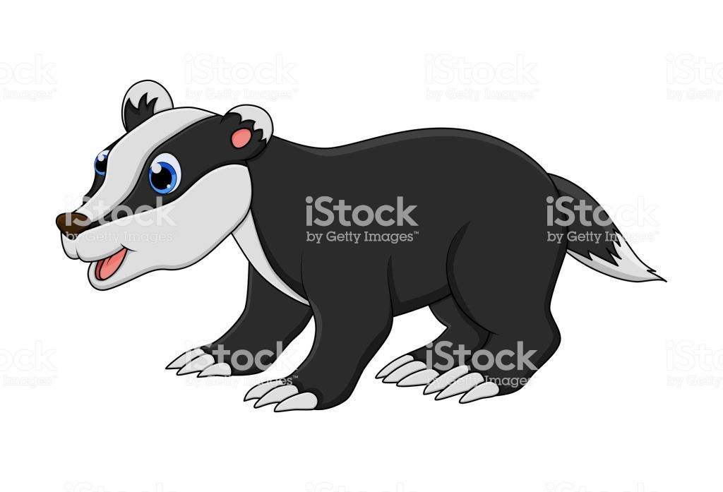 Badger clipart images