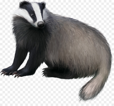 Badger in the honeycomb clipart picture library download European PNG - DLPNG.com picture library download