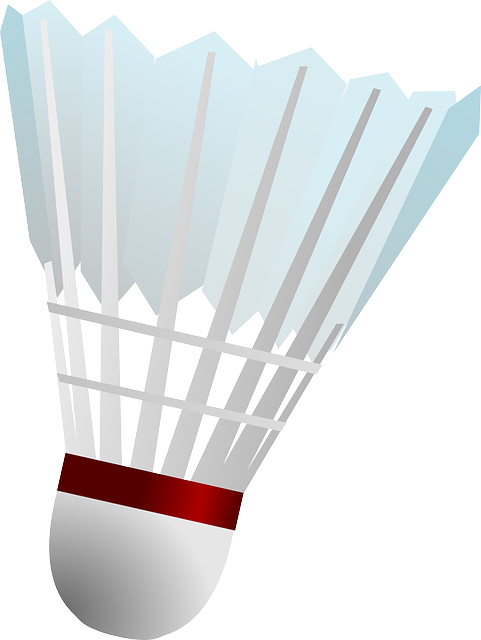 Badminton birdie clipart vector stock Free Image on Pixabay - Badminton, Shuttle, Shuttlecock   Sports ... vector stock