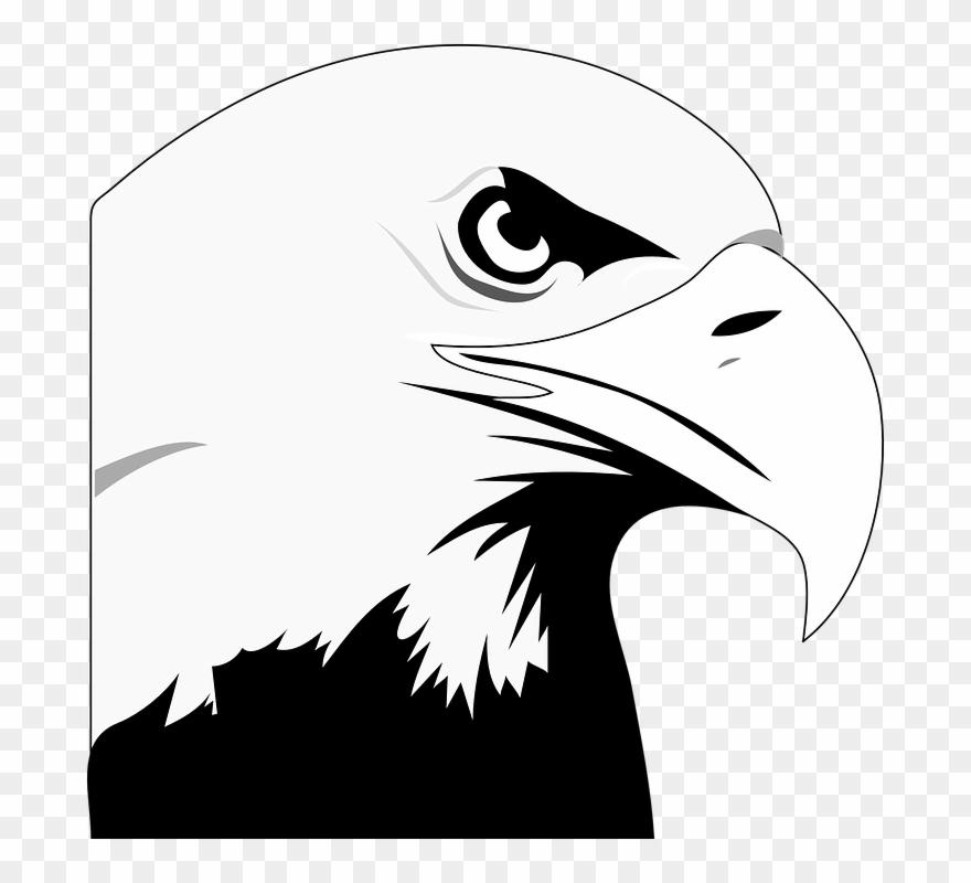 Bald black & white clipart transparent Animated Eagle - Clipart Library - Bald Eagle Black And White ... transparent