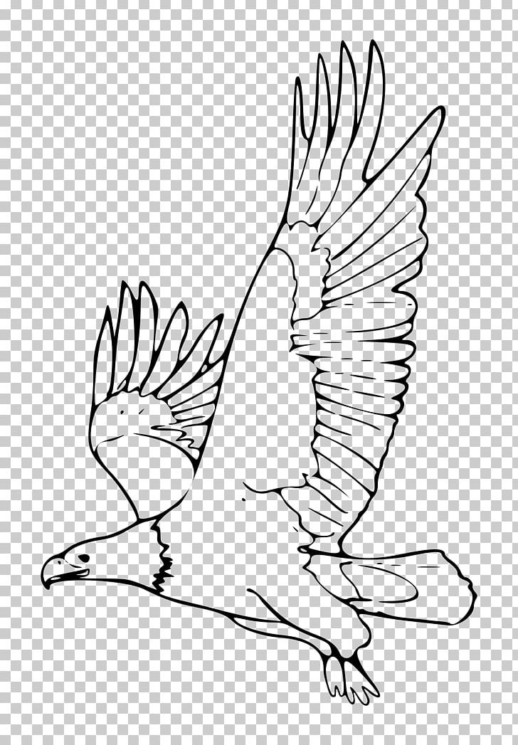 Bald black & white clipart graphic transparent download Bald Eagle Black And White Black-and-white Hawk-eagle PNG, Clipart ... graphic transparent download