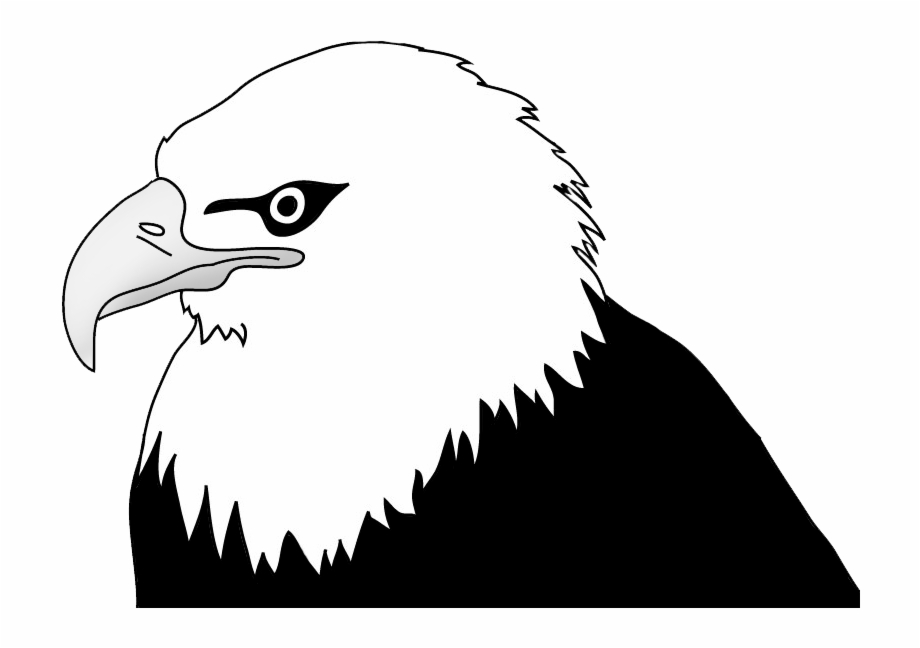 Bald black & white clipart clipart black and white library Bald Eagle Head Illustration - Bald Eagle Clipart Black And White ... clipart black and white library