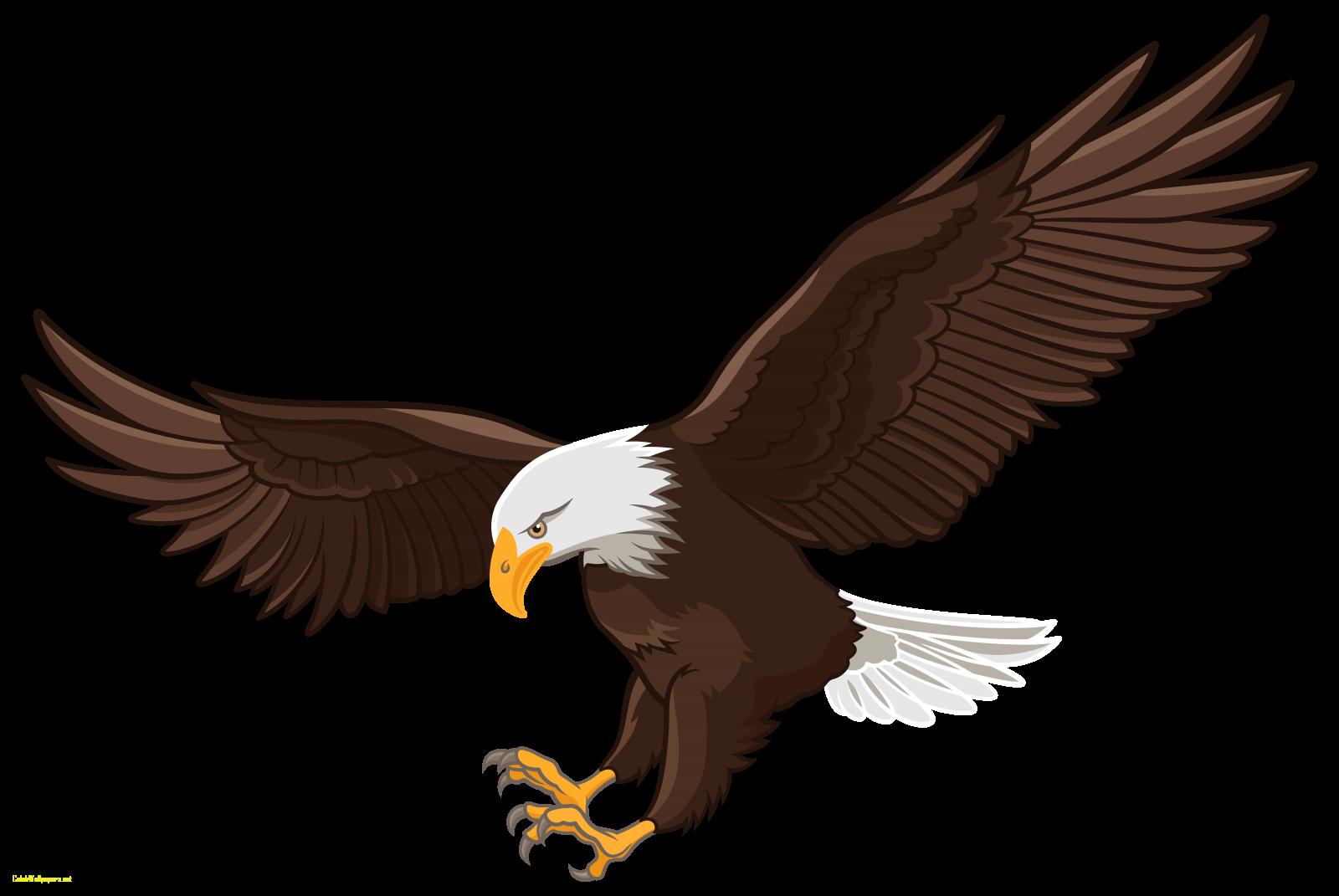 Bald eagle clipart images png black and white library eagles clipart file #306 | Vastu in 2019 | Eagle, Eagle images ... png black and white library