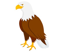 Bald eagle clipart images jpg royalty free download Bald eagle clipart » Clipart Station jpg royalty free download