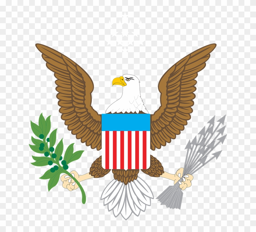 Clipart bald eagle png freeuse library Bald Eagle Clipart Us Eagle - American Bald Eagle Clip Art - Png ... png freeuse library