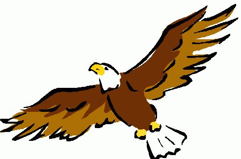 Bald eagle clipart images image black and white Bald eagle eagle clipart 2 - Clipartix image black and white