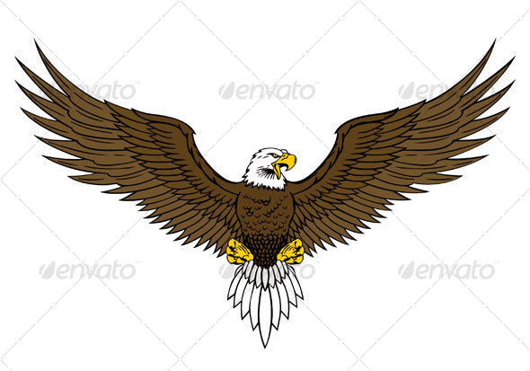 Bald eagle | Animals, Freedom and Graphic design illustration graphic
