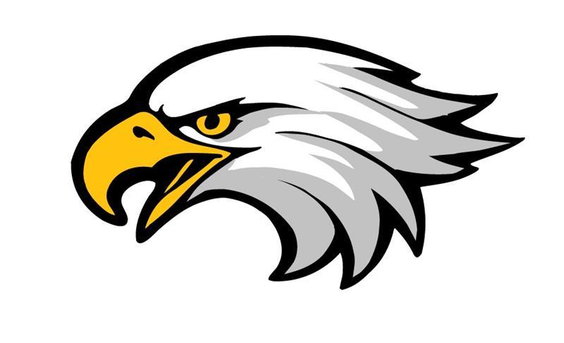 Bald eagle clipart logo png clip freeuse library Eagle Head Clip Art & Eagle Head Clip Art Clip Art Images ... clip freeuse library