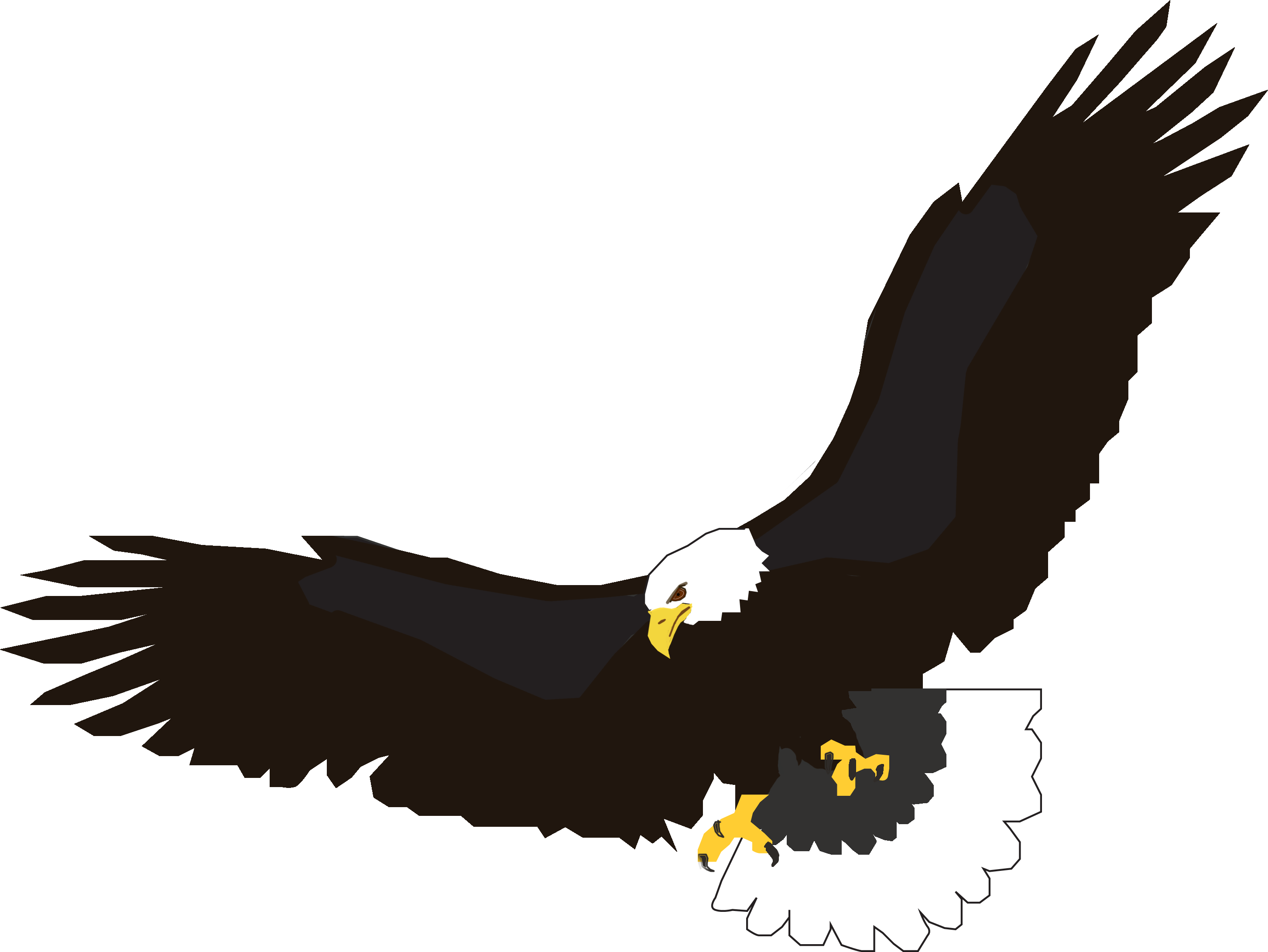 Flying bald eagle clipart - ClipartFest clip art library library