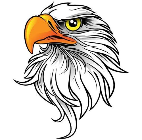 Eagle clipart images vector black and white download 44 Images Of Eagle Mascot Clipart You Can Use These Free Cliparts ... vector black and white download