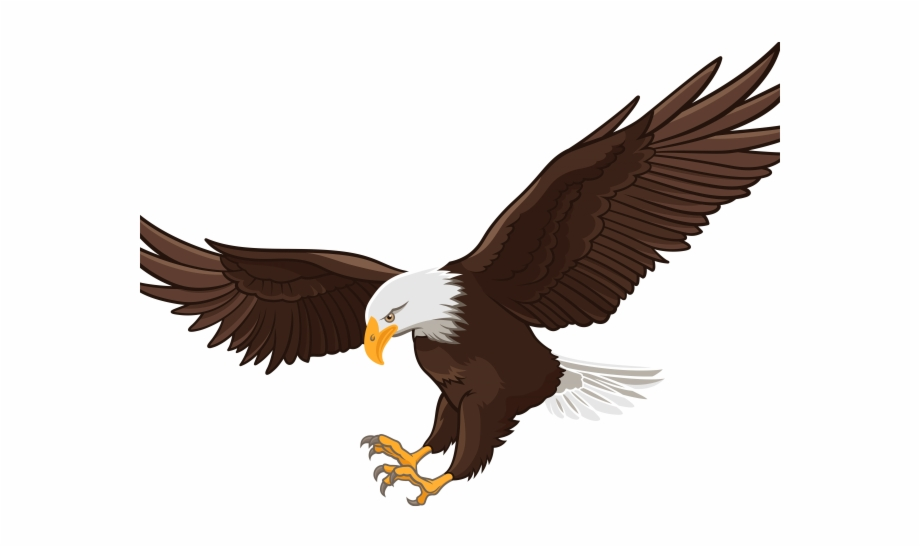 Bald eagle real pictures clipart clip art royalty free Bald Eagle Clipart Face - Eagle Flying Realistic Drawing Free PNG ... clip art royalty free