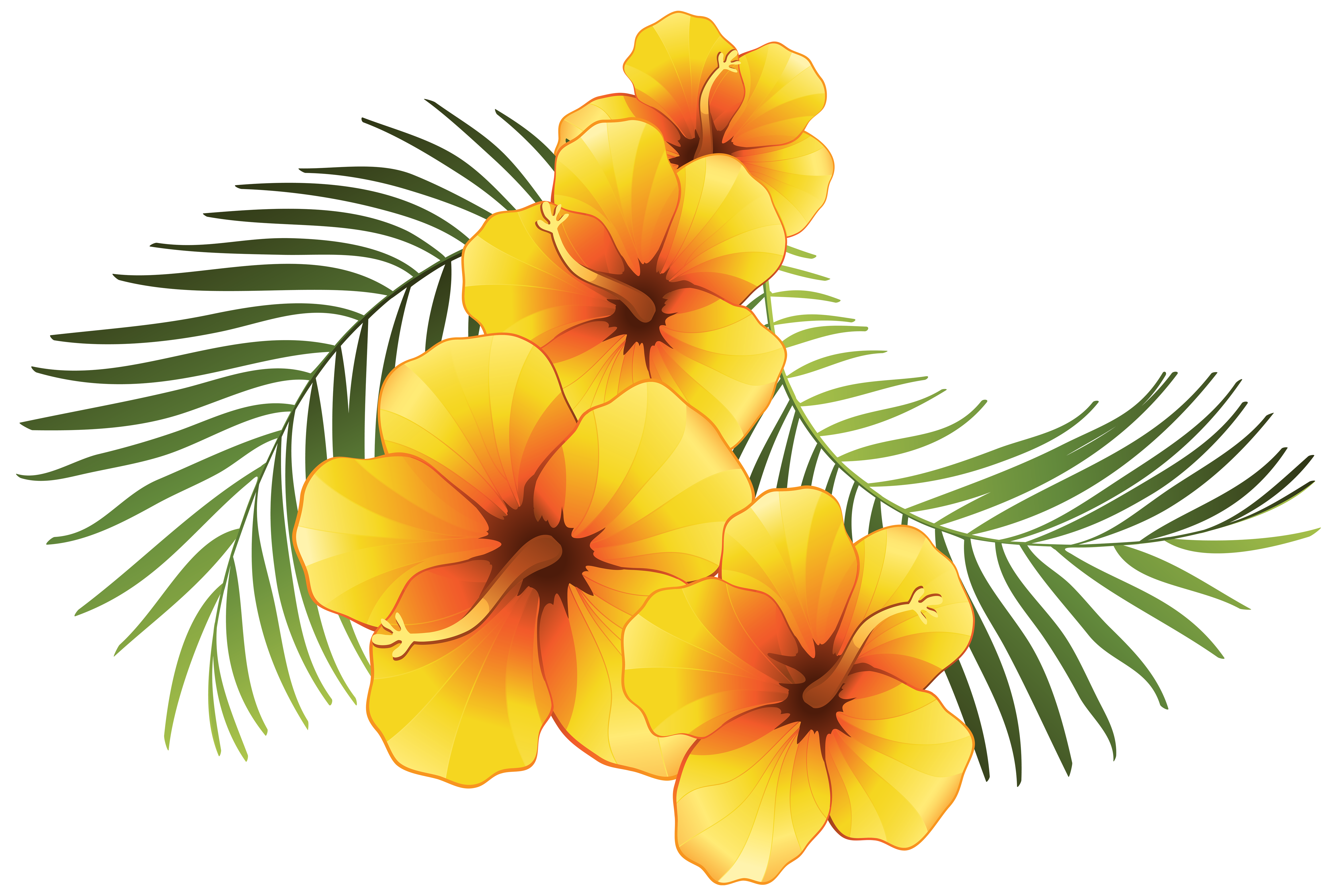 Hawaiin sun clipart png download Plumeria Clipart at GetDrawings.com | Free for personal use Plumeria ... png download
